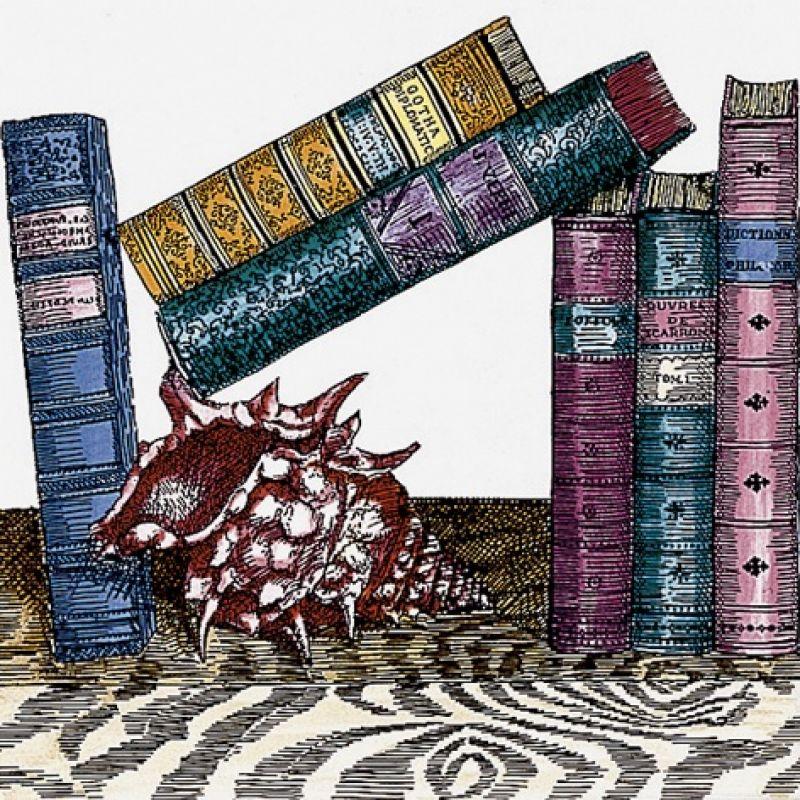 Декор керамический настенный, книги, 20х20 см CERAMICA BARDELLI Libreria 11 (LI01120)